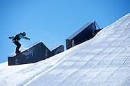 Brandon Davis during Snowboard Slopestyle Eliminations at 2014 X Games Aspen at Buttermilk Mountain in Aspen, CO. ©Brett Wilhelm/ESPN
