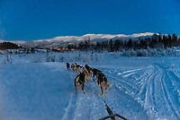 Dog sledding, Tromso Wilderness Centre (Tromso Villmarkssenter), Kvaloya Island, near Tromso, Arctic, Northern Norway.