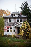 United States: Homes of Detroit