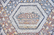 3rd century AD Roman mosaic panel of fruit in a basket from Thugga, Tunisia.  The Bardo Museum, Tunis, Tunisia. .<br /> <br /> If you prefer to buy from our ALAMY PHOTO LIBRARY  Collection visit : https://www.alamy.com/portfolio/paul-williams-funkystock/roman-mosaic.html - Type -   Bardo    - into the LOWER SEARCH WITHIN GALLERY box. Refine search by adding background colour, place, museum etc<br /> <br /> Visit our ROMAN MOSAIC PHOTO COLLECTIONS for more photos to download  as wall art prints https://funkystock.photoshelter.com/gallery-collection/Roman-Mosaics-Art-Pictures-Images/C0000LcfNel7FpLI