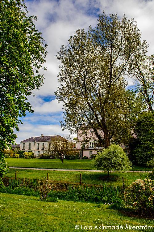 Parks, greenery, and domestic animals around Ballymaloe