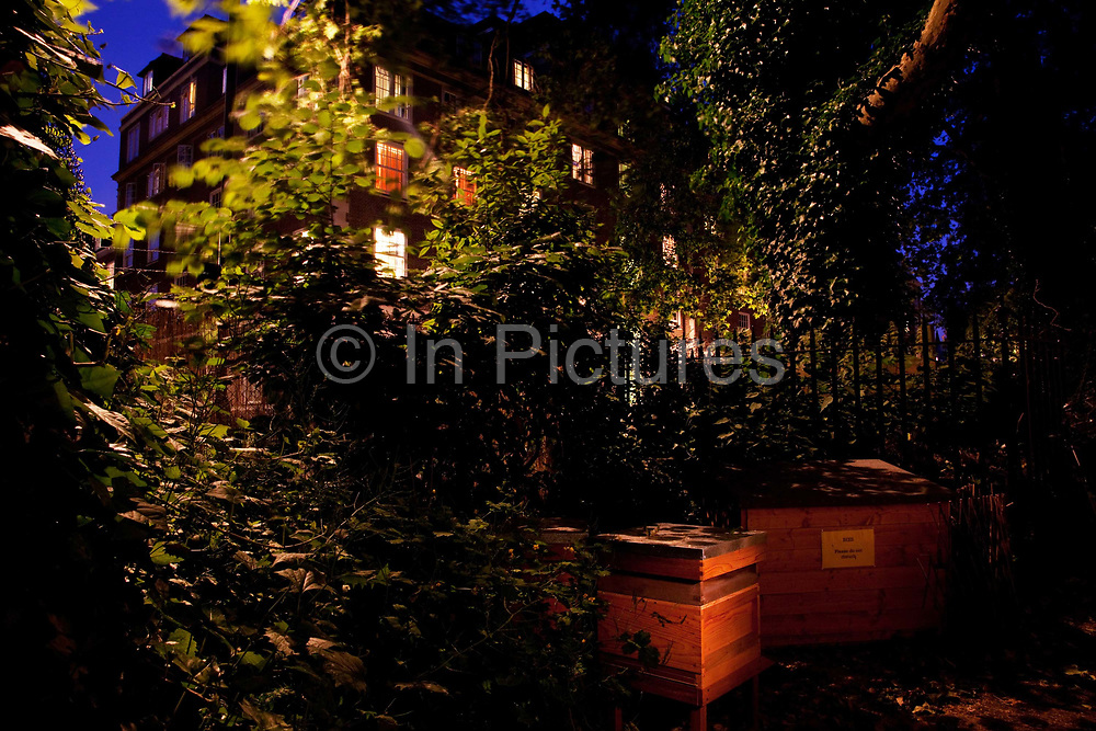Bees in bed in Coram's Field. Bees never sleep but they stay in the hive after dark. Keeping bees is a growing hobby in London and the hives and apiaries can be found in back gardens and roof tops across the capital.