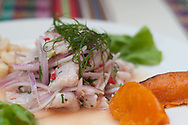"""A """"ceviche"""" at Songo Rocosongo  restaurant, one of the historical sites of Barranco"""