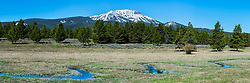 Sawtell Peak Panorama.  Spring brings the opportunity of new green grass while the peaks of the Centennial Range are still sporting a crown of snow. The Centennial Range is in Island Park Idaho. <br /> <br /> This 1X3 ratio panorama is a large file and can printed 8-foot by 3.5-foot at 195dpi