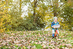 Little boy driving with his walking bicycle on grass covered autumn leaves