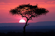 Brilliant colors in the african sky as the sun rises.