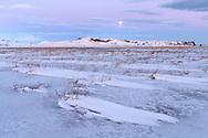 Eindrücke bei der Halbinsel Dyrholaey, Vik, Island<br /> <br /> Scenes on the peninsula Dyrholaey, Vik, Iceland