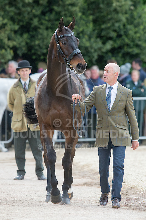 Andrew Hoy (AUS) & Rutherglen - First Horse Inspection - Mitsubishi Motors Badminton Horse Trials - CCI4* - Badminton, Gloucestershire, United Kingdom - 06 May 2015
