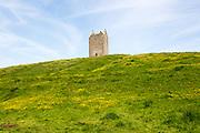 Dovecote ruin famous local landmark town of Bruton, Somerset, England, UK