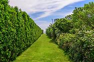 258 Horsemill Lane, Water Mill, NY.  Listowel Garden, Parrish Art Museum Landscape Pleasure 2017 garden tour