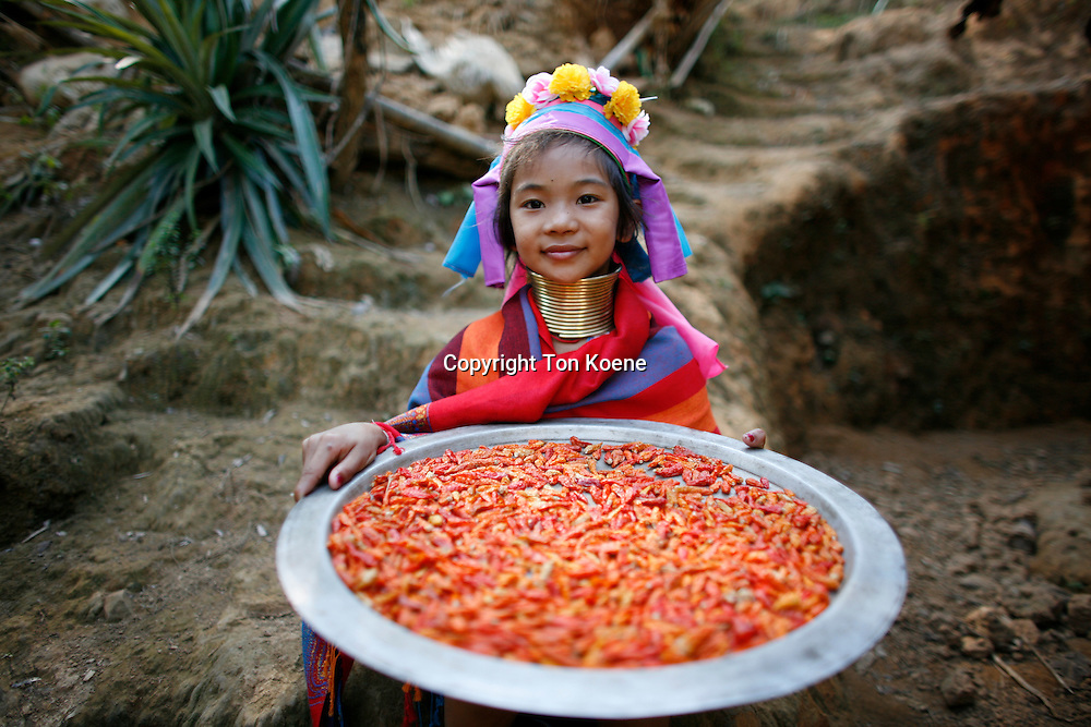 chili peppers in Thailand