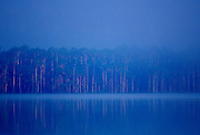 Lake Sandoval in the protected reserved zone Tambopata in the Peruvian Rainforest, Peru, South America