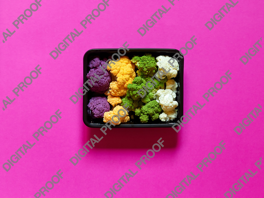 Set of seasonal and colorful cauliflower violet, yellow, green and white boxed in a plastic recipient over a fucsia background