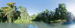 Scenic view of tropical rainforest and river, Tortuguero National Park, Limon Province, Costa Rica