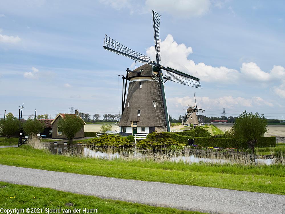 Zevenhuizen-Moerkapelle, Nederland - 13 mei 2021: Nederlands landschap met molens bij de molenviergang. | Zevenhuizen-Moerkapelle, Netherlands - May 13, 2021: Dutch landscape with windmills at the molenviergang.
