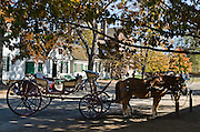 "Horses pull a red buggy in Colonial Williamsburg, the historic district of the city of Williamsburg, Virginia, which was colonial Virginia's capital from 1699 to 1780, and a center of education and culture. The capital straddled the boundary of two of the original shires of Virginia, James City Shire (now James City County), and Charles River Shire (now York County). Here, Thomas Jefferson, Patrick Henry, James Monroe, James Madison, George Wythe, Peyton Randolph, and dozens more helped mold democracy in the Commonwealth of Virginia and the United States. Motto: ""that the future may learn from the past.""  The Historic Area exhibits colonial houses and American Revolutionary War history. Prominent buildings in Colonial Williamsburg include the Raleigh Tavern, the Capitol, The Governor's Palace, and Bruton Parish Church. Interpreters work, dress, and talk as they did in the era, teaching visitors. The 301-acre Historic Area is located immediately east of the College of William and Mary, which was founded at Middle Plantation in 1693. The new College, long a desire of the colonists, was a key factor in the establishment of the town as capital of Virginia in 1698 and its renaming for King William III of England shortly thereafter.  Jamestown and Yorktown, the other two points of the Historic Triangle, are linked to Colonial Williamsburg by the National Park Service's bucolic Colonial Parkway."