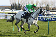 CASTLETOWN (11) ridden by Thomas Wilmott and trained by Pauline Robson winning The Purvis Marquees Racing Excellence Hands & Heels Finale Handicap Hurdle Race over 2m 4f (£16,800) dur ing the Scottish Grand National race day at Ayr Racecourse, Ayr, Scotland on 13 April 2019.