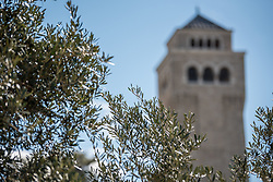 28 February 2020, Jerusalem: Trees and the tower of the Augusta Victoria Hospital. The Lutheran World Federation campus, including the Augusta Victoria Hospital campus, is one of few green areas still remaining in East Jerusalem.