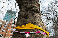 2018-01-13 Yarnbombing of Euston HS2 trees