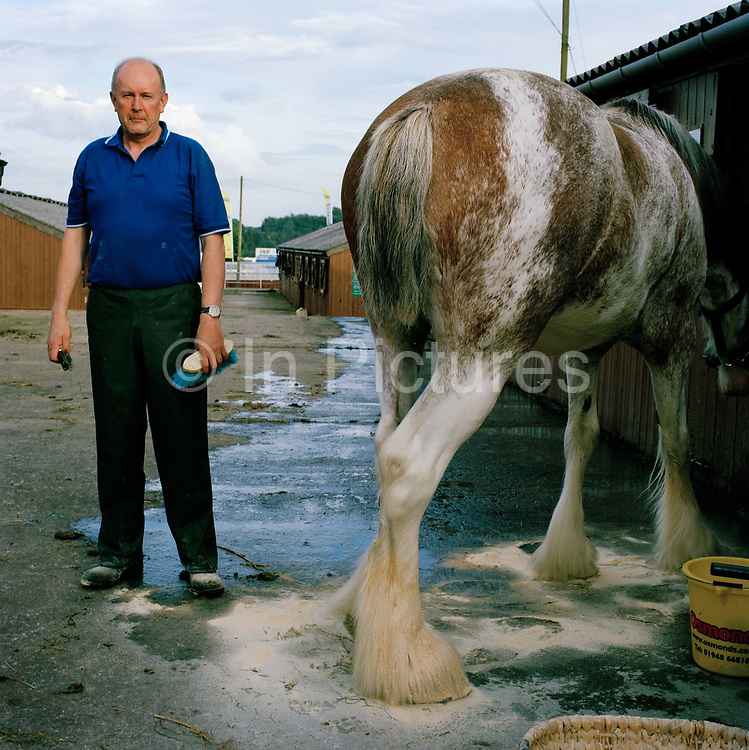John Taylor, vet, from Holmfirth in West Yorkshire,  and his wife, Sharon, a veterinary nurse, have had Clydesdales for 14 years. When it comes to the preparation and showing, Taylor says, 'I do the washing and she does the plaiting and the ribbons - she is the artistic one. 'Mind you, it's not easy. Billy was clean when we brought him here, but he just lay down in something horrid while I wasn't watching. That's why I'm working late, cleaning him to get him ready for tomorrow. Billy is a family member as far as we're concerned, but I called him all the names under the sun when I saw how dirty he'd got.' The Great Yorkshire Show, one of Britain's biggest agricultural shows, is famous for its competitive displays of livestock. The event, established in 1837, attracts over 125 000 visitors a year and has over 10 000 entries to its pedigree competitions ranging from pigeons and rabbits to bulls and shire horses.