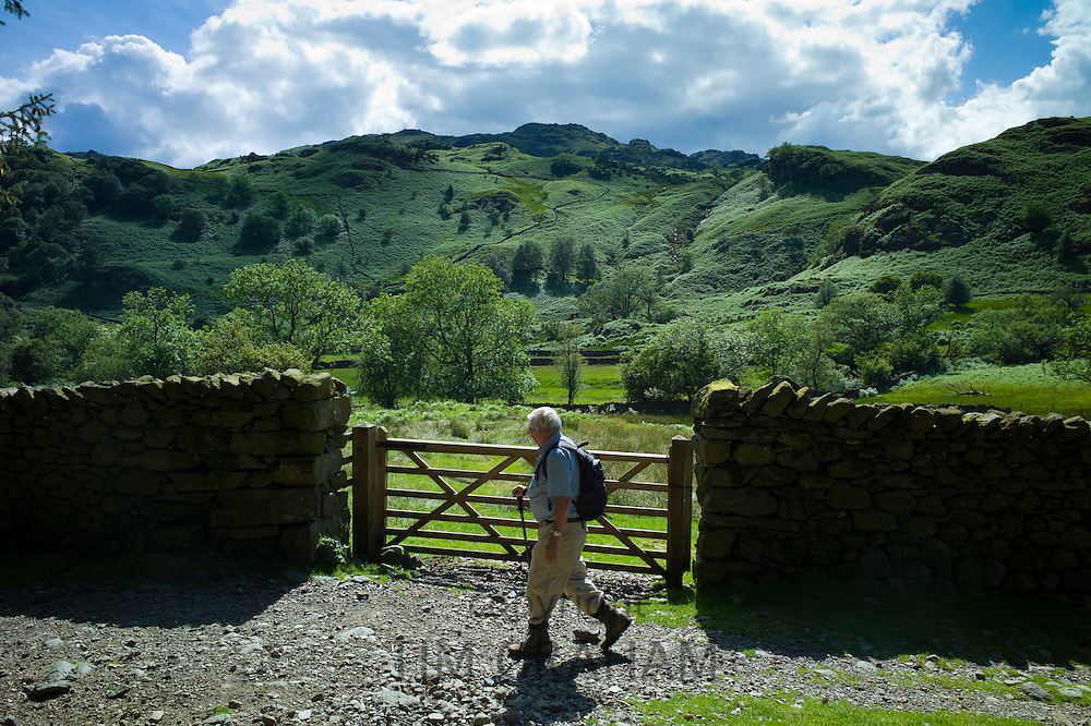 Tourist walking on nature trail in lakeland countryside at Easedale in the Lake District National Park, Cumbria, UK