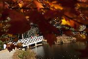Footbridge seen through autumn foliage at the home of author and poet Carl Sandburg in Flat Rock, NC