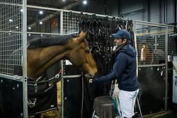 Guerdat Steve, SUI, Hannah<br /> Indoor Brabant 2018<br /> © Sharon Vandeput<br /> 11/03/18