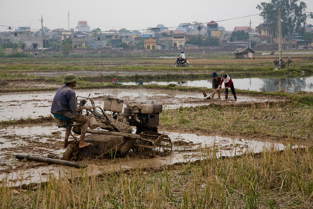 A farmer prepares rice fields for planting in  Ha Tay Province, outside Hanoi, Vietnam.