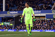 Everton Goalkeeper Joel Robles looks on. Barclays Premier League match, Everton v West Bromwich Albion at Goodison Park in Liverpool on Saturday 13th February 2016.<br /> pic by Chris Stading, Andrew Orchard sports photography.
