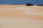 Natal_RN, Brasil...Dunas no litoral norte de Natal...The dunes in the north coast in Natal...Foto: LEO DRUMOND / NITRO