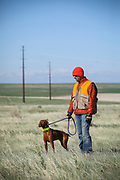 SHOT 5/9/20 8:50:16 AM - Various pointing breeds compete in the Vizsla Club of Colorado Licensed Hunt Test Premium at the Rocky Mountain Sporting Dog Club Grounds in Keenesburg, Co. (Photo by Marc Piscotty / © 2020)
