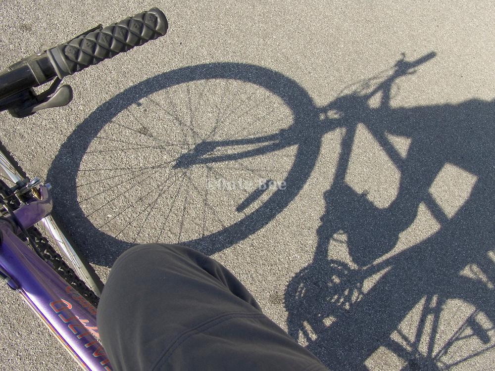 shadow of bicycle on asphalt