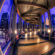 In The Link skywalk between Union Station and the Westin Crown Center Hotel above Pershing and Main, Kansas City Missouri, January 2011.