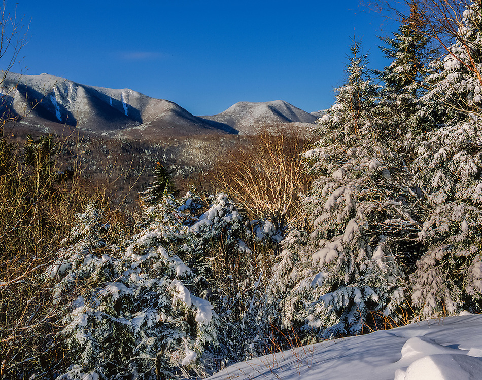 Snow covered spruce & views to Scar Ridge, White Mtn National Forest, Lincoln, NH