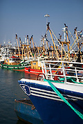Fishing boats tied up in Kilmore Quay, Wexford, Ireland