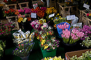 Bunches of flowers on display outside florist street stall, Bath, England