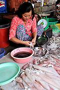 Woman cleaning squid at Cho Vung Tau (Vung Tau Market). Vung Tau, Vietnam