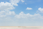 The story goes that someone tried to drive his 4x4 across this vast lake bed, and was never seen again' <br /> <br /> A hundred million years ago this huge basin in the Etosha National Park was a lake, fed by the Kunene River in Angola, but 16,000 years ago, due to tectonic plate movement the river was diverted West to the Atlantic and gradually the lake dried up leaving this vast lake bed. At 4800 km² this saltpan, the largest in Africa, can be seen from space.<br /> <br /> I'd wanted to see this surreal landscape for a long time, and surprising though it may seem to others, this appealed to me even more than seeing the wildlife in the park! There is this deep need within me to experience vast empty spaces; it's all part of that humbling vulnerability that I seek. I wanted to feel minute, isolated and insignificant in every possible term. It was difficult of course with anyone else around but fortunately I had a sense of it with just Jani and her two cousins around. We drove out onto the lake (on an 'official' stick marked track) and stepped into the baking heat. There was simply nothing ahead of us, almost 50kms to the far side and almost 60 kms to the left and right – it was vast indeed.<br /> <br /> The earth was soft and crumbly rather than rock hard. I can imagine in rain it would get very soft indeed. I've read that in prolonged heavy rain the whole lake bed floods up to 10cm deep creating an incredible mirror –like surface which attracts thousands of migrating flamingos.