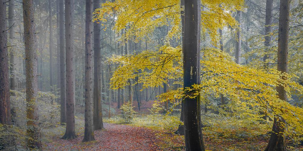 Bavaria, Germany. Oct. 2014.