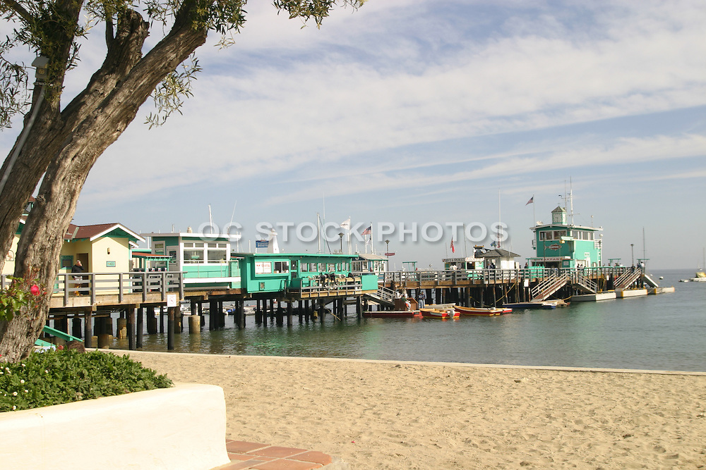 Descanso Beach and Green Pleasure Pier at Avalon Bay