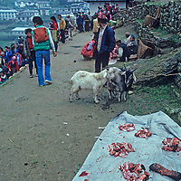 Goats wait to be purchased at the weekly Saturday market in Namche Bazaar, the leading Sherpa town of Nepal's Himalaya. Most people pictured have carried big loads for several days up from the lowlands (probably also the source of the goats.)