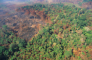 DEFORESTATION PRIMARY RAINFOREST,  Amazon, near Boavista, northern Brazil, South America. Primary rainforest scorched by fires during the dry season. Fires are often started by campesinos wanted to develop more land into slash and burn farming. Ecological biosphere and fragile ecosystem where flora and fauna, and native lifestyles are threatened by progress and development. The rainforest is home to many plants and animals who are endangered or facing extinction. This region is home to indigenous primitive and tribal peoples including the Yanomami and Macuxi.