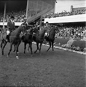 "05/08/1960<br /> 05/08/1960<br /> 05 August 1960<br /> R.D.S Horse Show Dublin (Friday). Aga Khan Trophy. The winning Argentine team (l-r): Jorge Lucardi on ""Stromboli""; Lieut-Col. Carlos Deila on ""Huipil""; Lieut. Naldo Dasso on ""Final"" and Ernesto Hartkopf on ""Baltasar""."
