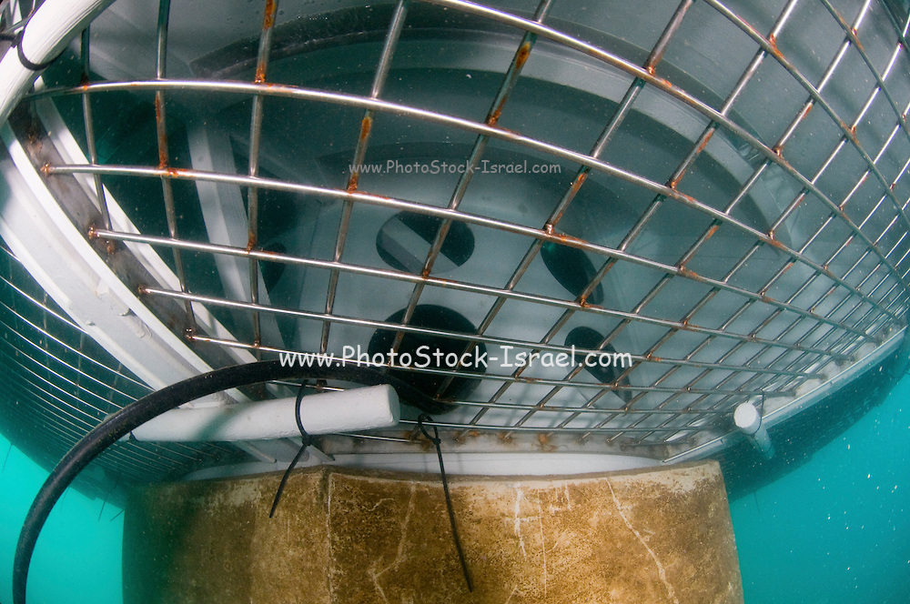 """Israel, Hadera, underwater photography of the offshore suction head for the desalinization plant. The facility will produce 127 Million m3 per a year and will be operated in the """"reveres osmosis"""" technique. The protective netting. First barrier filter"""