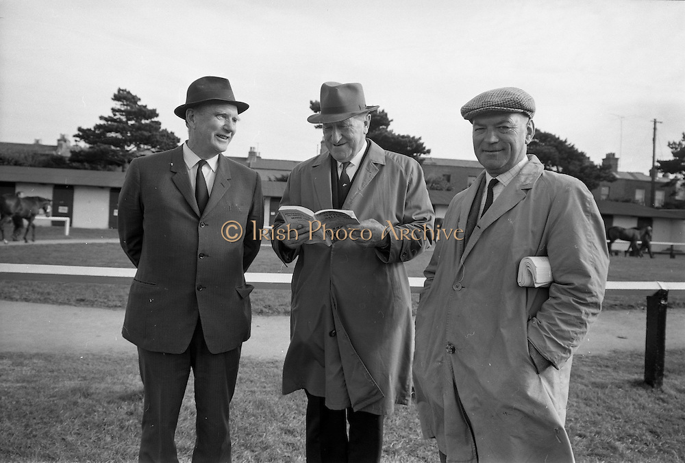 16/09/1968<br /> 09/16/1968<br /> 16 September 1968<br /> Goffs September Bloodstock Sales at the RDS, Ballsbridge, Dublin. Pictured at the sales were (l-r) Mr W.J. McHenry, Portmarnock Stud; J.P. Frost, Limerick, Chairman of National Stud and David Hyde, Manager, National Stud.