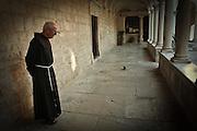 Franciscan priest is followed by a pigeon he has befriended. Zadar, Croatia