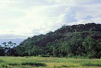 Cerro Delgado Chalbaud, Amazonas, Venezuela.