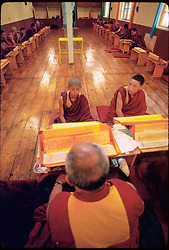 DHARAMSALA, INDIA  - Novice monks follow the instruction of their master at the Namgyal Monastery inside the Dalai Lama's compound in Dharamsala, India. The focus of cultural life in Dharamsala is the Namgyal Monastery, the tantric college which performs rituals with and for His Holiness the Dalai Lama. The Namgyal Monastery was founded by the Third Dalai Lama in the late sixteenth century. Since then, the monastery has exclusively served the Dalai Lamas. A distinctive feature of this monastery is its diversity of practice: prayers and rituals of all the major schools of Tibetan Buddhism are performed by Namgyal monks. The monastery is now situated next to the Tsuglag Khang, or the Central Cathedral, across from the Dalai Lama's residence. Young monks can often be seen studying, and practicing debate in the courtyard leading to His Holiness' residence. At present, the monastery has more than 180 monks, of which the younger monks study the major texts of Buddhist Sutra and Tantra.(PHOTO © JOCK FISTICK)