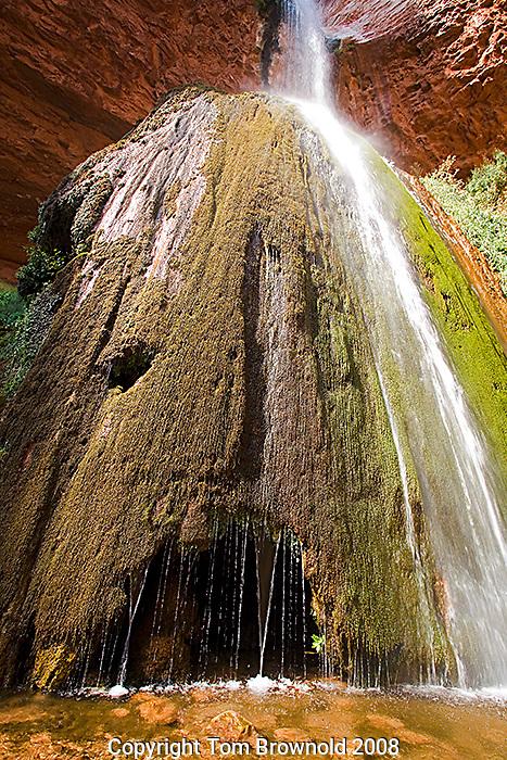 Ribbon Falls in Grand Canyon