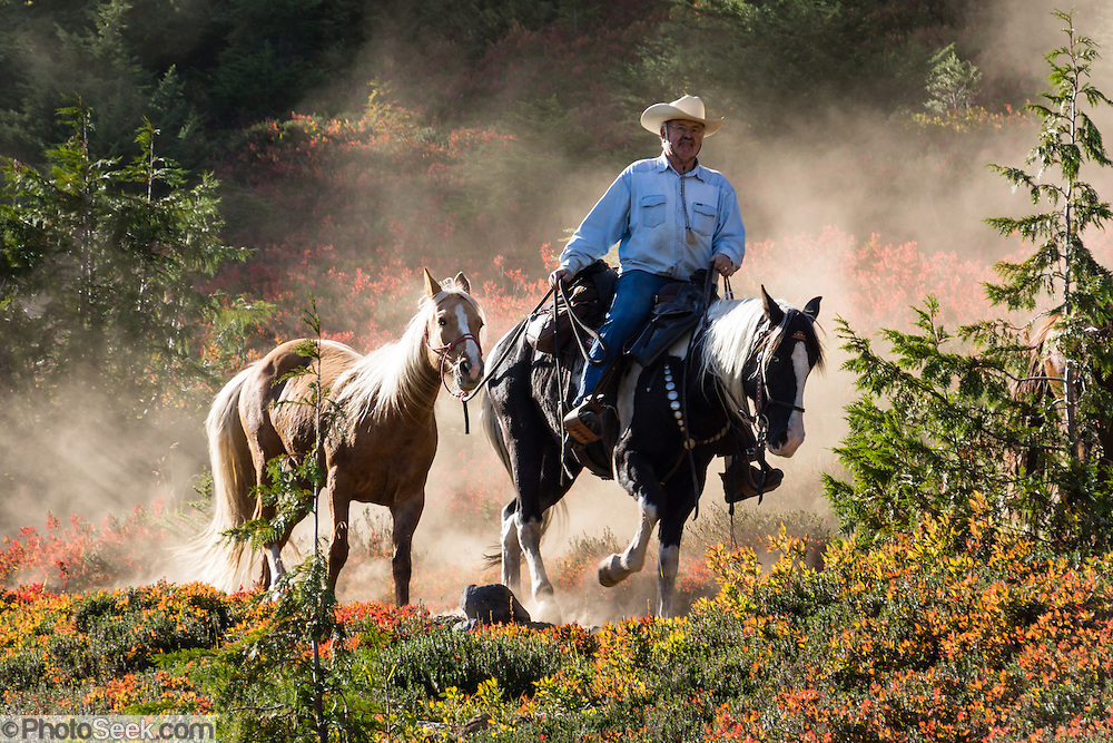 A mounted horse wrangler leads a spare horse down dusty Park Butte Trail, Mount Baker Wilderness, Mount Baker-Snoqualmie National Forest, Washington, USA. Photographed with Sony Alpha NEX-7 camera (zoomed to 140mm, f/8, 1/125 second) with Sony E-Mount 18-200mm f3.5-6.3 OSS lens.